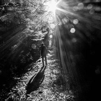 Man silhouette sunlight
