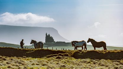 Mullaghmore Horses